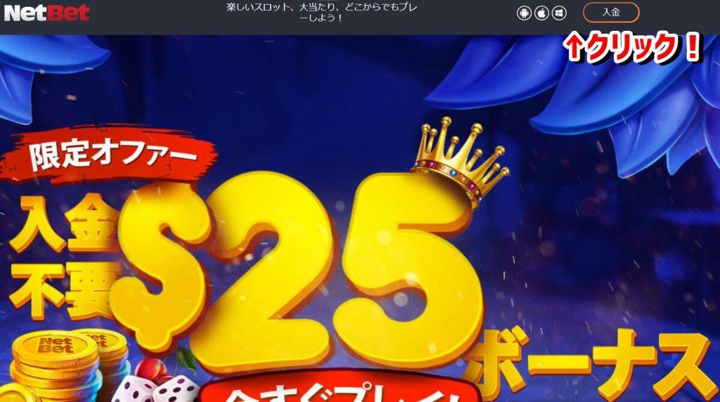ネットベットカジノ_公式サイト